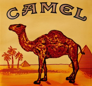 camel-cigarettes-pack